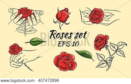 Set Of Hand Drawn Roses, Rosebuds And Leaves. Red Roses And Line. Decoration And Decorations.