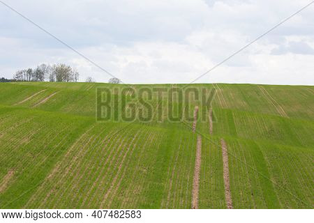 Rural Green Hilly Landscape Of Belarus. Cloudy Sky On Background.