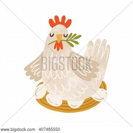 Cute Brood Hen On Nest With Eggs. Domestic Bird During Laying And Brooding. Colorful Flat Textured V