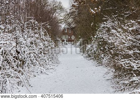 Dutch House In The Snow At The End Of A Lane. Snow Covered Branches Line The Side Of The Lane.