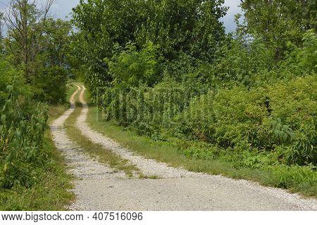 A Single Track White Road In Rural Friuli-venezia Giulia, North East Italy, Near Cividale Del Friuli