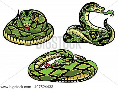 Set Of 3 Snake Mascots With Different Types Of Green Reptiles.