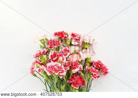 Bouquet Of Red And White Carnation Flowers On Light Background. Mothers Day, Valentines Day, Birthda