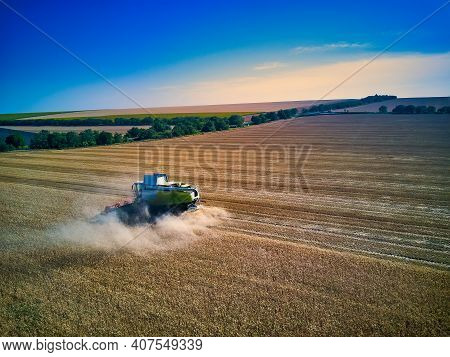 Aerial View On Combine Harvester Gathers The Wheat At Sunset. Harvesting Grain Field, Crop Season. V