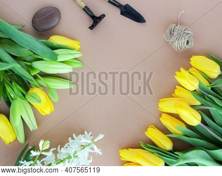 Spring Gardening Works On Landscaping. Flowers Grown In Your Garden. The Concept Of Organic Farming,