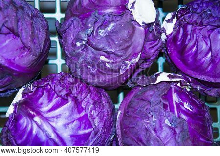Red Cabbage Has Bluish-purple Leaves With A Purple Tinge, With An Increased Content Of Anthocyanins