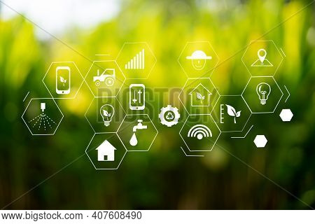 Agriculture Technology Concept Man Agronomist Using A Tablet In An Agriculture Field Read A Report.