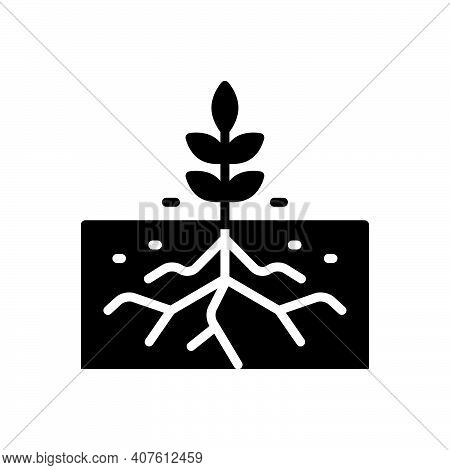 Black Solid Icon For Root Rootlet Sprout Agriculture Ecology Botany