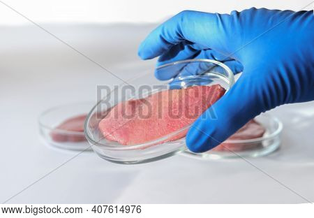 Hand Holding Lab Gown Meat In A Petri Dish. Meat In Glass Cell Culture Dish. In Vitro Cultured Flesh