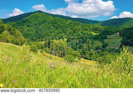 Rural Landscape Of Ukrainian Carpathians. Beautiful Summer Scenery In Mountains. Green Grassy Meadow