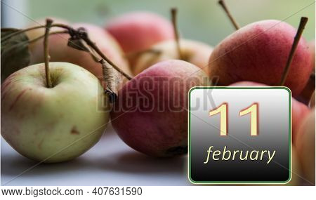 February 11, 11th Day Of The Month. Apples - Vitamins You Need Every Day. Winter Month. Day Of The Y