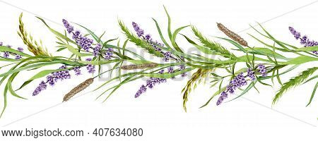Seamless Border From Lavender And Meadow Grass Watercolor Illustration. Natural Organic Herbs Mixed