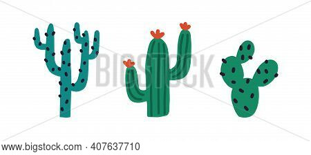 Set Of Different Prickly Desert Plants Or Cacti With Thorns. Hand-drawn Tropical Cactuses With Spine