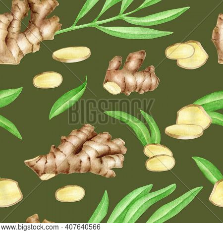 Ginger Root Seamless Pattern With Slices And Leaves. Hand Painted Watercolor Ginger Rhizome On Dark