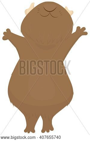Cute Brown Plump Guinea Pig Is Standing On Its Hind Legs With Its Muzzle Raised Up, Cute Domestic Ro