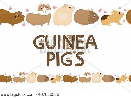 Cute Funny Guinea Pigs Of Different Colors Stand, Cute Home Rodent, Vector Illustration In Flat Styl