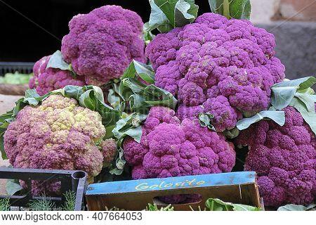 Purple Cauliflowers, Large Colorful Cauliflowers Lined Up On A Stall, Purple Vegetables