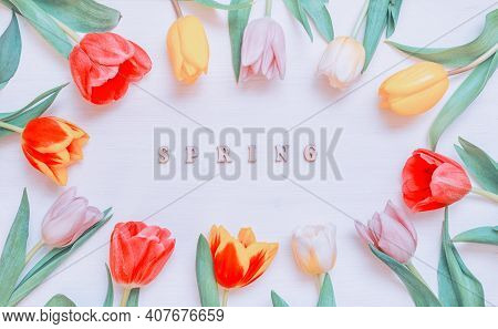 Spring background. Lovely spring tulip flowers on wooden backdrop with inscription Spring, spring holiday postcard. Spring flower background, spring tulip flowers, spring pattern, nice spring card, spring background, spring composition, spring still life