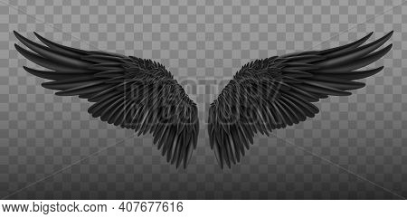 Realistic Black Wings. Pair Of White Isolated Angel Style Wings With 3d Feathers On Transparent Back