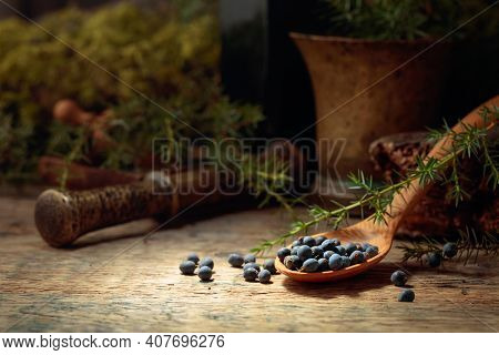 Juniper Berries On A Old Wooden Table. In The Background Branches Of Juniper And Brass Mortar With P
