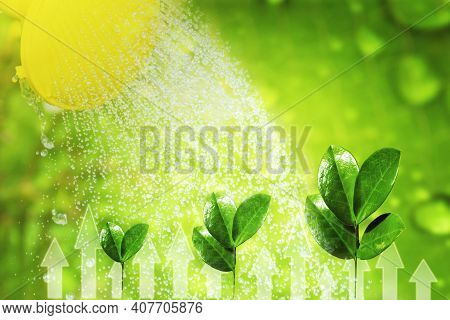 Watering Plants With Cans. Young Shoots Of Plants Under Drops Of Rain. The Concept Of Growth And Fer