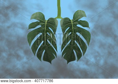 Monstera Leaf As Lungs Shape,surrounded By Gray Toxic Smoke,co2.ecology Concept Of Air Pollution,har