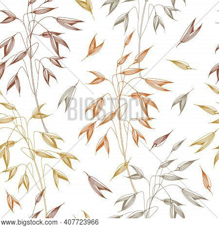 Vector Seamless Pattern With Spikelets Of Oats, Grain. Hand Drawn Illustration. Sketch. Graphic Styl