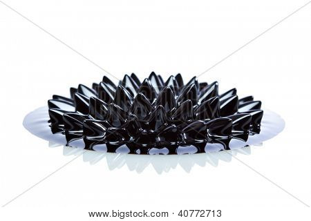 Ferrofluid structure induced by a neodymium magnet close-up. Ferrofluid is a colloidal liquid of nanoscale particles in a carrier fluid that becomes magnetized by approaching a magnet.