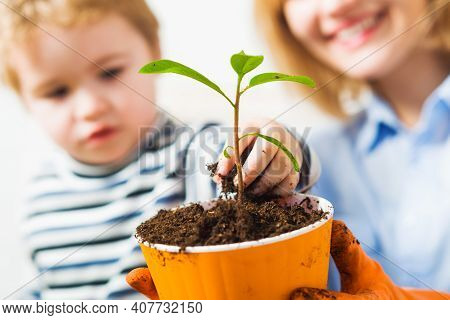 Mother With Little Son Planting Flower. Family Relationships. Care For Plants. Gardening Discovering