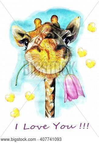 The Giraffe Holds A Flower In Its Mouth. The Pink Tulip Wilted. Hearts Flew Away.