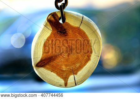Timeline Rings Shows On A Small Slice Of Wood.  Piece Is Hanging From Leather Strap.  Wood Is Cracke