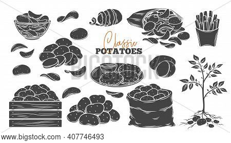 Potato Products Glyph Icons Set. Engraved Monochrome Chips, Pancakes, French Fries, Whole Root Potat