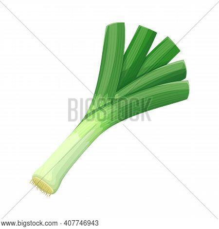 Vector Leek Vegetable Illustration For Farm Market Menu. Healthy Food Design