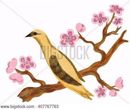 Yellow Bird Like As Golden Oriole Sitting On The Blooming Sakura Branch. Hand Drawn Watercolor Illus