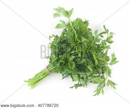 Fresh bunch green parsley bunch on white background. Top view, flat lay. Floral design element. Healthy eating and dieting concept