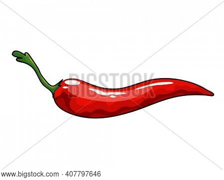 Hand drawn chili pepper. Isolated hot spicy mexican pepper on white background. Natural healthy food. Spicy ingredient