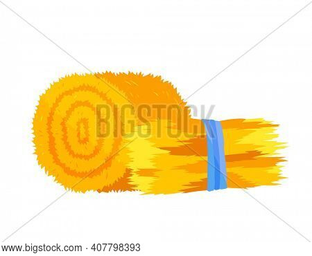 Roll of hay. Round hay bales. Flat dried haystack isolated on white background. Farming haymow bale hayloft  illustration, haystack, hayrick