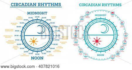Circadian Rhythm Set. Scheme of Sleep Wake Cycle. Infographic Elements. Sunlight Exposure on Regulates Hormones Production. Processes Taking Place in Body During Day and Night.