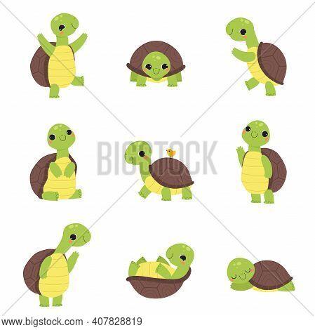 Happy Green Turtle Walking, Waving Paw And Sleeping Vector Set