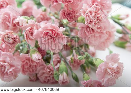 Small Bouquet Of Pink Carnations In On A White Background, Copy Space