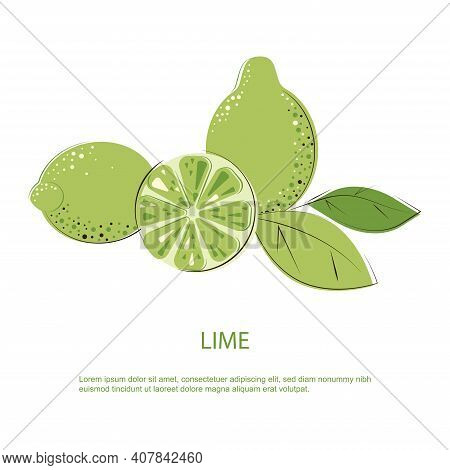 Green Juicy Lime With Green Leafs. Composition Of Whole Limes And Cut One.