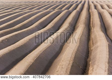 Arable Land, Furrows Texture Background. Agriculture, Rural Farming, Field On Farm, Arable, Soil, Co