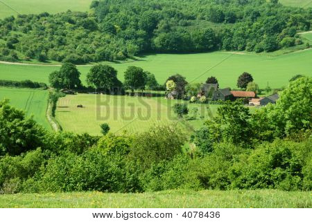 Small English Farm, Field And Tractor In Summer Harvest