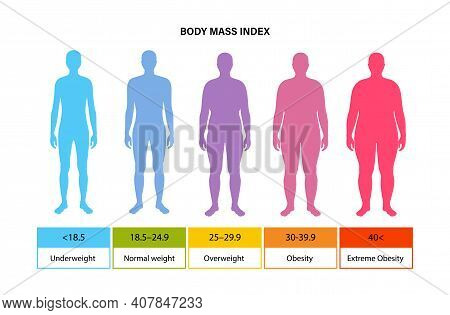 Body Mass Index Poster. Man Silhouettes With Obese, Normal And Slim Fit. Bmi Ranges From Overweight