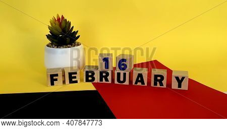 February 16 On Wooden Cubes On A Multicolored Yellow Red Black Background.calendar For February .