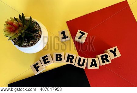 February 17 On Wooden Cubes .next To It Is A Pot With A Cactus On A Multicolored Background.calendar