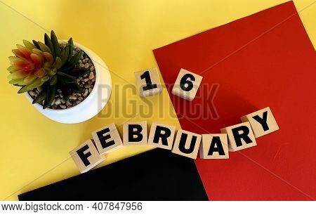 February 16 On Wooden Cubes .next To It Is A Pot With A Cactus On A Multicolored Background.calendar