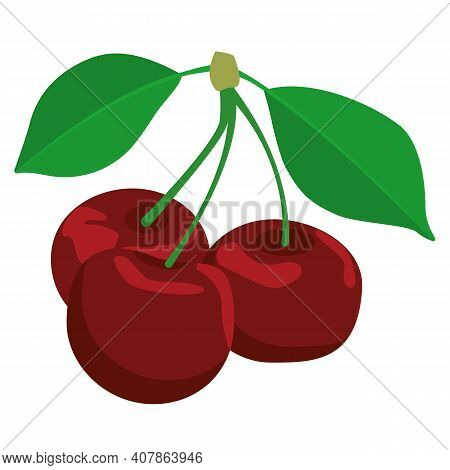 Berries On A Twig With Leaves, Red Cherry, Ripe Edible Objects, Two Leaves And Three Ripe Berries