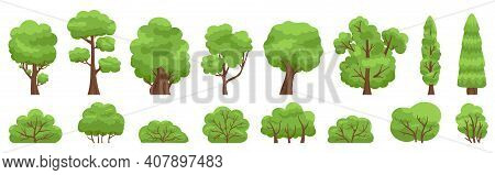 Green Trees. Forest Or Garden Bush And Tree, Woody Foliage Green Branches. Nature Forest And Park Gr