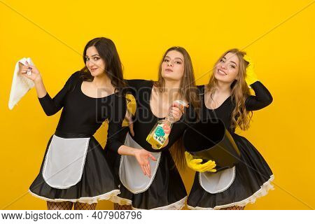 Beautiful Sexy Women In Maid Clothes Posing
